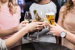 Groupe d'amis grillant avec de la bière et le vin Photos libres de droits