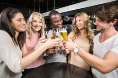 Groupe d'amis grillant avec de la bière et le vin Photographie stock libre de droits