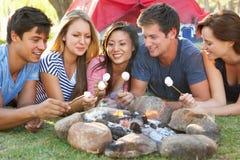 Groupe d'amis grillant des guimauves au-dessus des vacances de camping du feu Photos stock