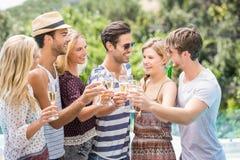 Groupe d'amis grillant des verres de champagne Photo stock