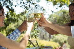 Groupe d'amis grillant des verres de champagne Photographie stock