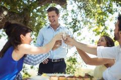 Groupe d'amis grillant des verres de champagne Images stock