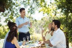 Groupe d'amis grillant des verres de champagne Image stock