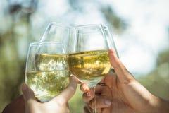 Groupe d'amis grillant des verres de champagne dans un restaurant Photos stock