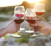Groupe d'amis grillant le vin rouge à une célébration de partie de détente Photographie stock