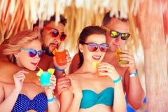 Groupe d'amis heureux ayant l'amusement sur la plage tropicale, cocktails colorés potables Photographie stock