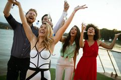 Groupe d'amis heureux buvant du champagne et c?l?brant la nouvelle ann image libre de droits
