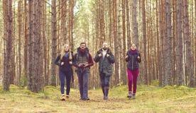 Groupe d'amis heureux et jeunes marchant dans la forêt et appréciant un g Photo libre de droits