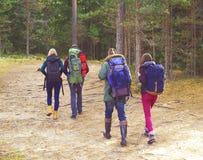Groupe d'amis heureux et jeunes marchant dans la forêt et appréciant un g Image stock