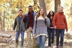 Groupe d'amis heureux trimardant ensemble par une forêt Photographie stock libre de droits