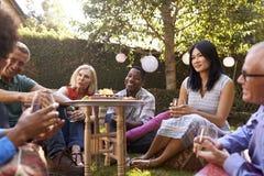 Groupe d'amis mûrs appréciant des boissons dans l'arrière-cour ensemble Photographie stock libre de droits