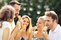 Groupe d'amis mangeant de la glace dehors Photographie stock