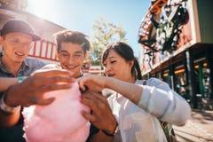 Groupe d'amis mangeant la sucrerie de coton en parc d'attractions Images stock