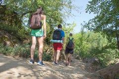 Groupe d'amis marchant avec des sacs à dos dans le sac à dos de forêt augmentant dans les bois Risquez, voyagez, tourisme, repos  Photos libres de droits