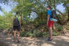 Groupe d'amis marchant avec des sacs à dos dans le sac à dos de forêt augmentant dans les bois Risquez, voyagez, tourisme, repos  Photo stock