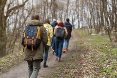 Groupe d'amis marchant avec la forêt de sacs à dos au printemps du dos Randonneurs trimardant dans les bois Aventure, voyage Image stock