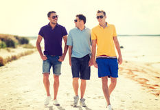 Groupe d'amis marchant sur la plage Photo stock