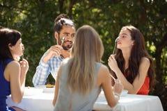 Groupe d'amis prenant le déjeuner Image libre de droits