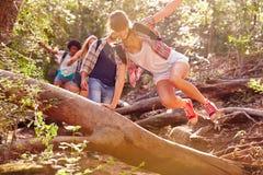 Groupe d'amis sautant par-dessus le tronc d'arbre sur la promenade de campagne Image libre de droits