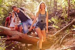 Groupe d'amis sautant par-dessus le tronc d'arbre sur la promenade de campagne Images libres de droits
