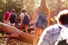 Groupe d'amis sautant par-dessus le tronc d'arbre sur la promenade de campagne Image stock