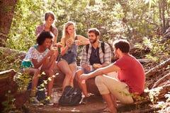 Groupe d'amis se cassant pour le déjeuner sur la promenade de campagne Images stock