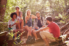 Groupe d'amis se cassant pour le déjeuner sur la promenade de campagne Photographie stock