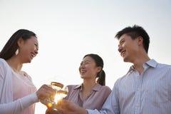 Groupe d'amis se grillant sur le dessus de toit au coucher du soleil Photographie stock