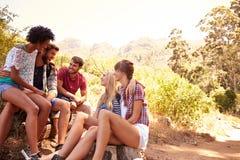 Groupe d'amis se reposant sur la promenade par la campagne Photographie stock