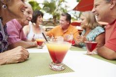 Groupe d'amis supérieurs appréciant des cocktails dans la barre ensemble Image libre de droits