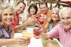 Groupe d'amis supérieurs appréciant des cocktails dans la barre ensemble Images stock