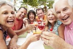 Groupe d'amis supérieurs appréciant des cocktails dans la barre ensemble Photos libres de droits