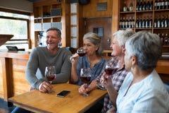 Groupe d'amis supérieurs ayant le vin rouge Images stock