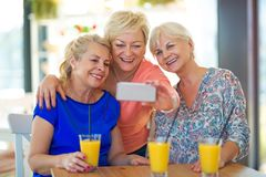 Groupe d'amis supérieurs prenant un selfie Photos libres de droits