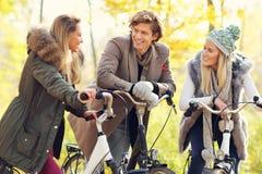 Groupe d'amis sur des vélos dans la forêt pendant le temps de chute Image libre de droits