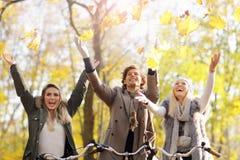 Groupe d'amis sur des vélos dans la forêt pendant le temps de chute Images stock
