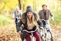 Groupe d'amis sur des vélos dans la forêt pendant le temps de chute Photos stock