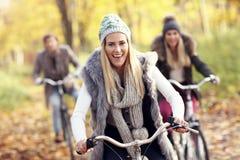 Groupe d'amis sur des vélos dans la forêt pendant le temps de chute Photographie stock