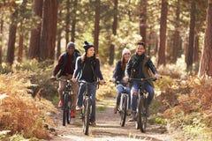 Groupe d'amis sur des vélos dans la vue de face de forêt Images stock