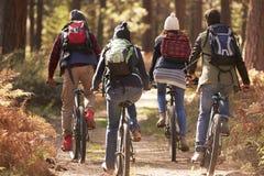 Groupe d'amis sur des vélos dans une forêt, fin arrière de vue  Images libres de droits