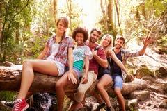 Groupe d'amis sur la promenade équilibrant sur le tronc d'arbre dans la forêt Photographie stock