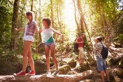 Groupe d'amis sur la promenade équilibrant sur le tronc d'arbre dans la forêt Image libre de droits