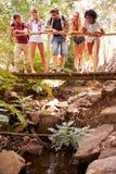 Groupe d'amis sur la promenade croisant le pont en bois dans la forêt Images libres de droits