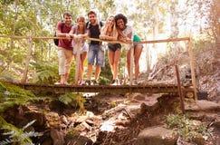 Groupe d'amis sur la promenade croisant le pont en bois dans la forêt Image libre de droits