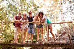 Groupe d'amis sur la promenade croisant le pont en bois dans la forêt Image stock