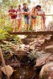 Groupe d'amis sur la promenade croisant le pont en bois dans la forêt Images stock