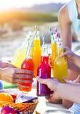 Groupe d'amis tenant des boissons au pique-nique d'été Images libres de droits