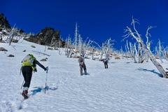 Groupe d'amis trimardant en montagnes Photographie stock libre de droits