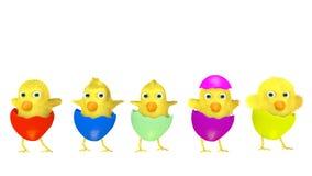 Groupe d'amuser des poulets de Pâques sur le blanc Photos stock