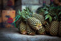 Groupe d'ananas Photo stock
